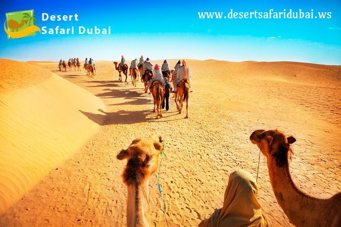 Evening Desert Safari Dubai | Morning Desert Safari Dubai – Desertsafaridubai.ws