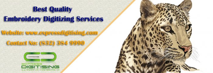 Professional Embroidery Digitizer | Embroidery Digitizing Services – Expressdigitising.com