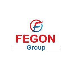 Fegon Group | 844-513-4111 | Best Network Security Solutions
