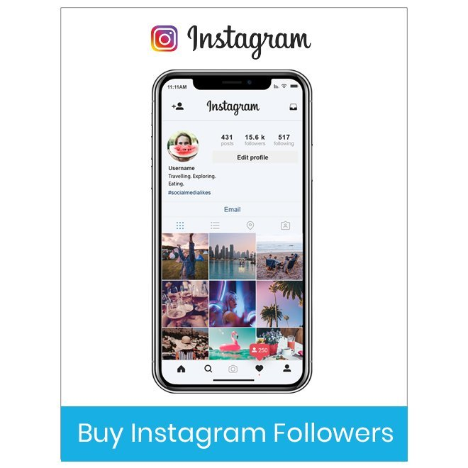 Instagram Followers the Best Way Promote Business Effectively