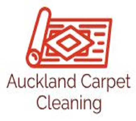 Professional Auckland Carpet Cleaning | Aucklandcarpetcleaning.Org.Nz