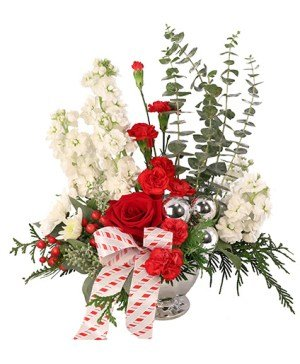 Christmas Flowers Online