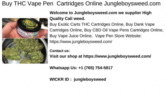 Buy THC Vape Pen  Cartridges Online Jungleboysweed.com