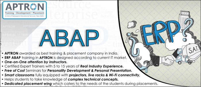 SAP ABAP Training in Delhi